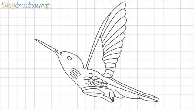 Hummingbird grid line drawing