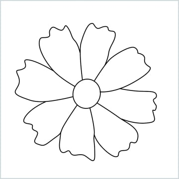 Marigold flower drawing