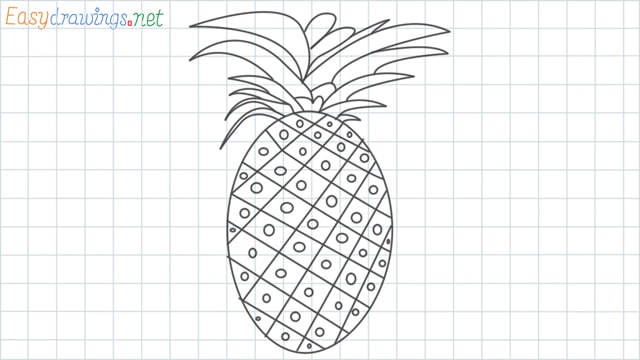Pineapple grid line drawing