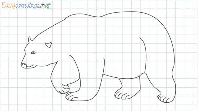 Polar bear grid line drawing