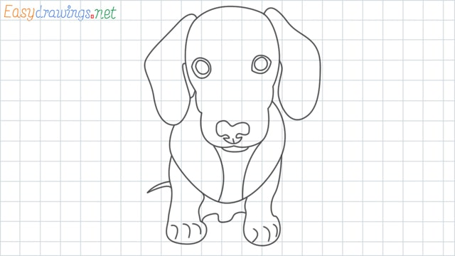 Puppy grid line drawing