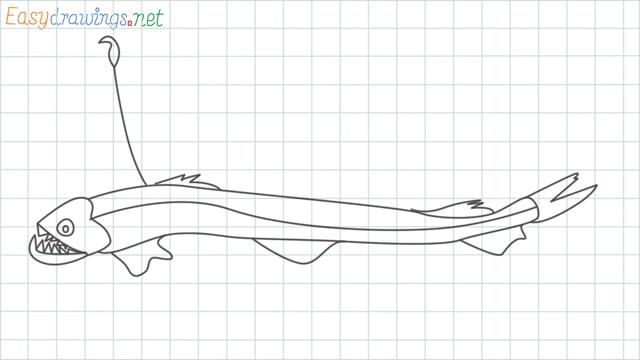Viperfish grid line drawing
