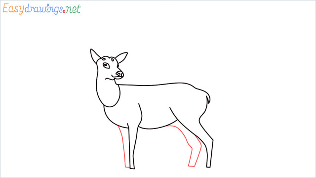 How to draw a Reindeer step (10)