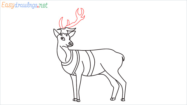 How to draw a Reindeer step (14)