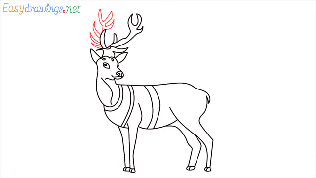 How to draw a Reindeer step (15)