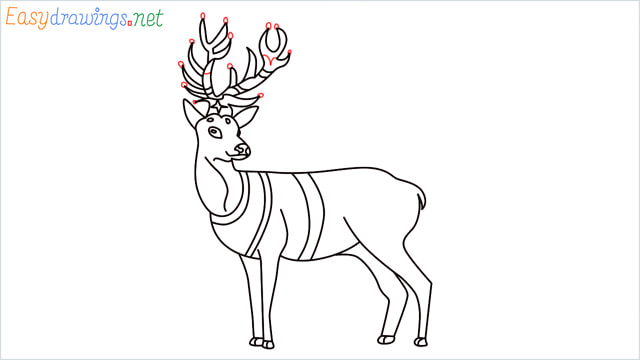 How to draw a Reindeer step (17)