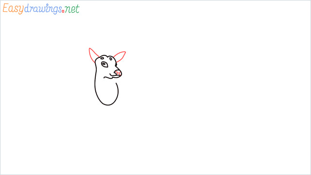 How to draw a Reindeer step (5)
