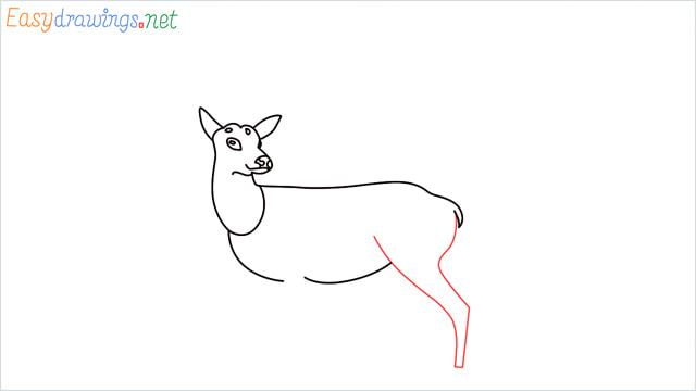 How to draw a Reindeer step (8)