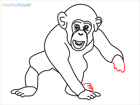 how to draw a chimpanzee step (13)