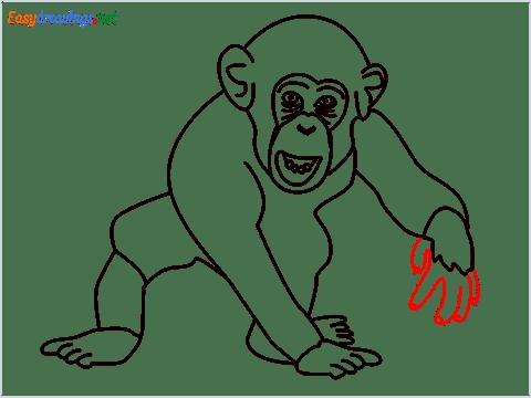 how to draw a chimpanzee step (14)