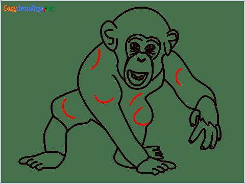 how to draw a chimpanzee step (15)