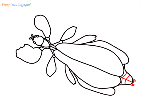 how to draw a leaf insect step (12)