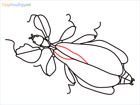how to draw a leaf insect step (14)