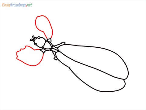 how to draw a leaf insect step (7)
