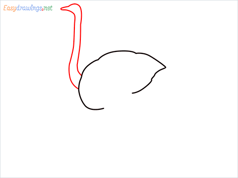 how to draw a ostrich step (2)