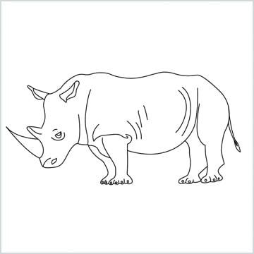 draw a rhino