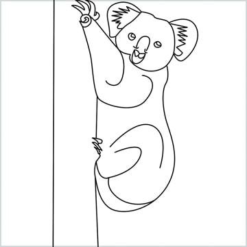 draw an Koala