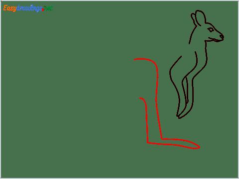 how to draw a Kangaroo Step (5)