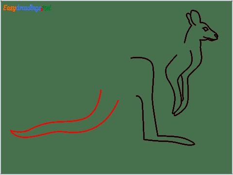 how to draw a Kangaroo Step (6)